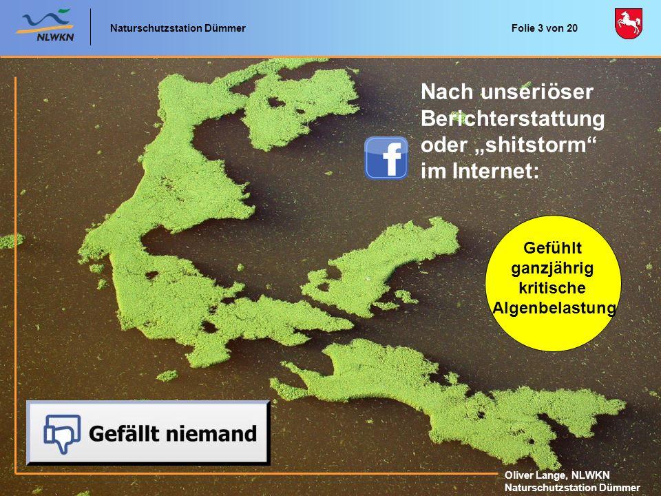 Naturschutzstation Dümmer Oliver Lange, NLWKN Naturschutzstation Dümmer Versachlichung der Seeproblematik durch Wasserlabor im Dümmer-Museum und Faltblatt der TID Folie 4 von 20