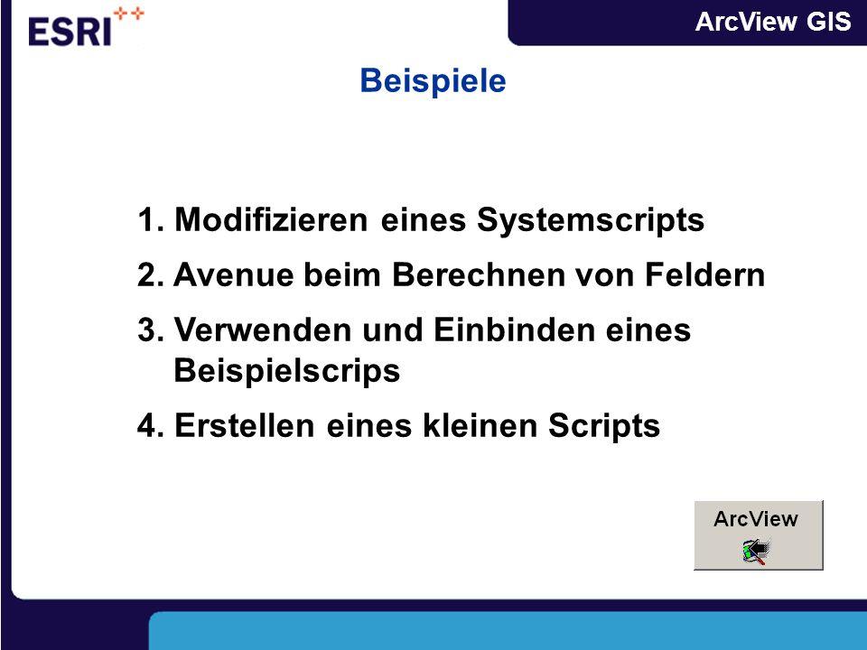 ArcView GIS Kleine Scripte selbst Programmieren Script im Scripteditor erstellen Script testen und ausführen Script testen und ausführen Script compil