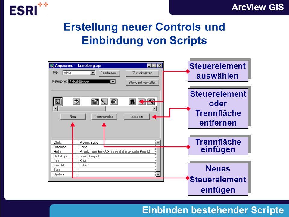 ArcView GIS Einbinden bestehender Scripte Steuerelement auswählen Steuerelement auswählen Steuerelement oder Trennfläche entfernen Trennfläche einfügen Trennfläche einfügen Neues Steuerelement einfügen Neues Steuerelement einfügen Erstellung neuer Controls und Einbindung von Scripts