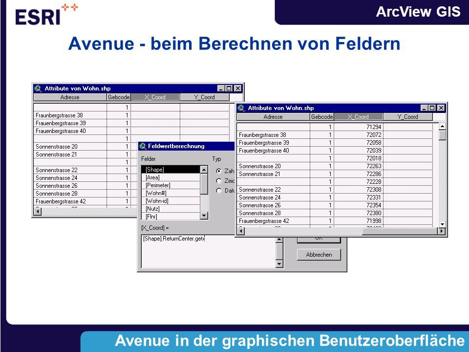 ArcView GIS Avenue in der Graphischen Benutzeroberfläche anwenden Avenue in der graphischen Benutzeroberfläche Feld Berechnen Abfragemanager
