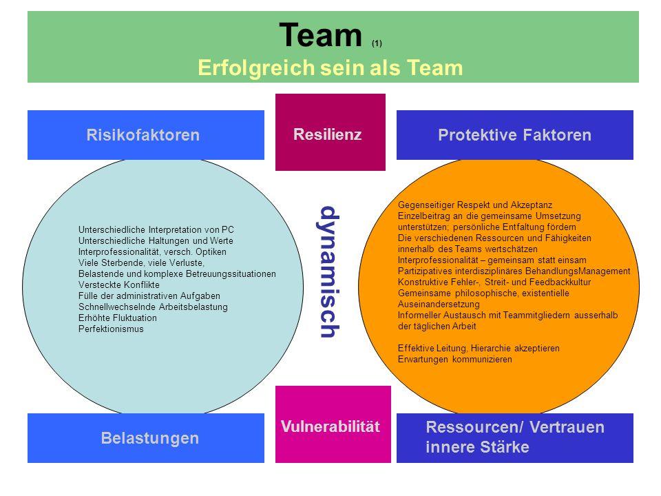 dynamisch Team (1) Erfolgreich sein als Team Risikofaktoren Resilienz Protektive Faktoren Belastungen Ressourcen/ Vertrauen innere Stärke Vulnerabilität Unterschiedliche Interpretation von PC Unterschiedliche Haltungen und Werte Interprofessionalität, versch.