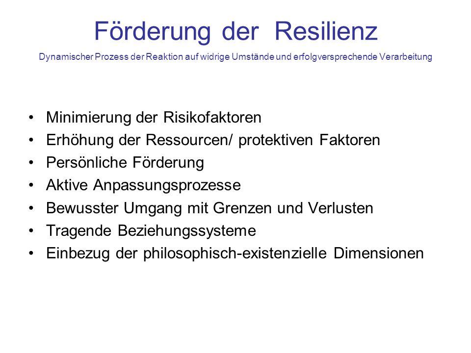 Schichtenmodell Zur Identifikation, auf welcher Ebene das Problem (Risiko) und auf welcher Ebene die Lösung (Ressource) liegt.