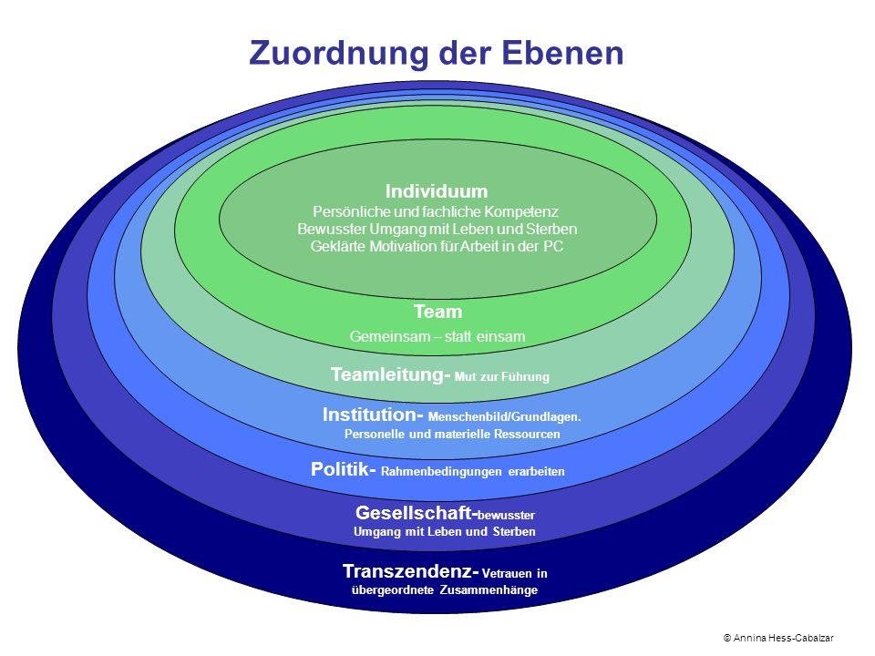 Zuordnung der Ebenen Individuum Persönliche und fachliche Kompetenz Bewusster Umgang mit Leben und Sterben Geklärte Motivation für Arbeit in der PC ©