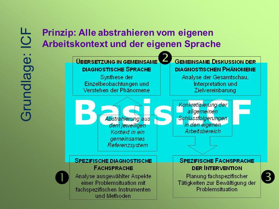 Basis:ICF Prinzip: Alle abstrahieren vom eigenen Arbeitskontext und der eigenen Sprache Grundlage: ICF