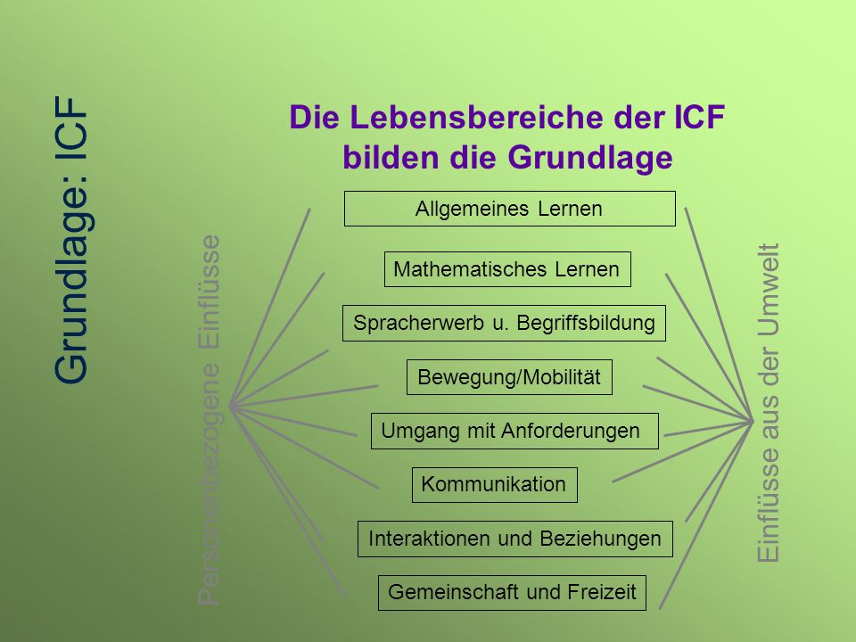 Allgemeines Lernen Mathematisches Lernen Spracherwerb u. Begriffsbildung Bewegung/Mobilität Umgang mit Anforderungen Kommunikation Interaktionen und B