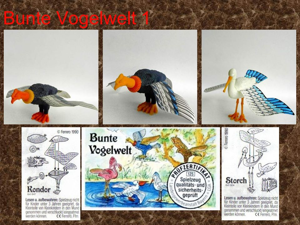 Bunte Vogelwelt 1