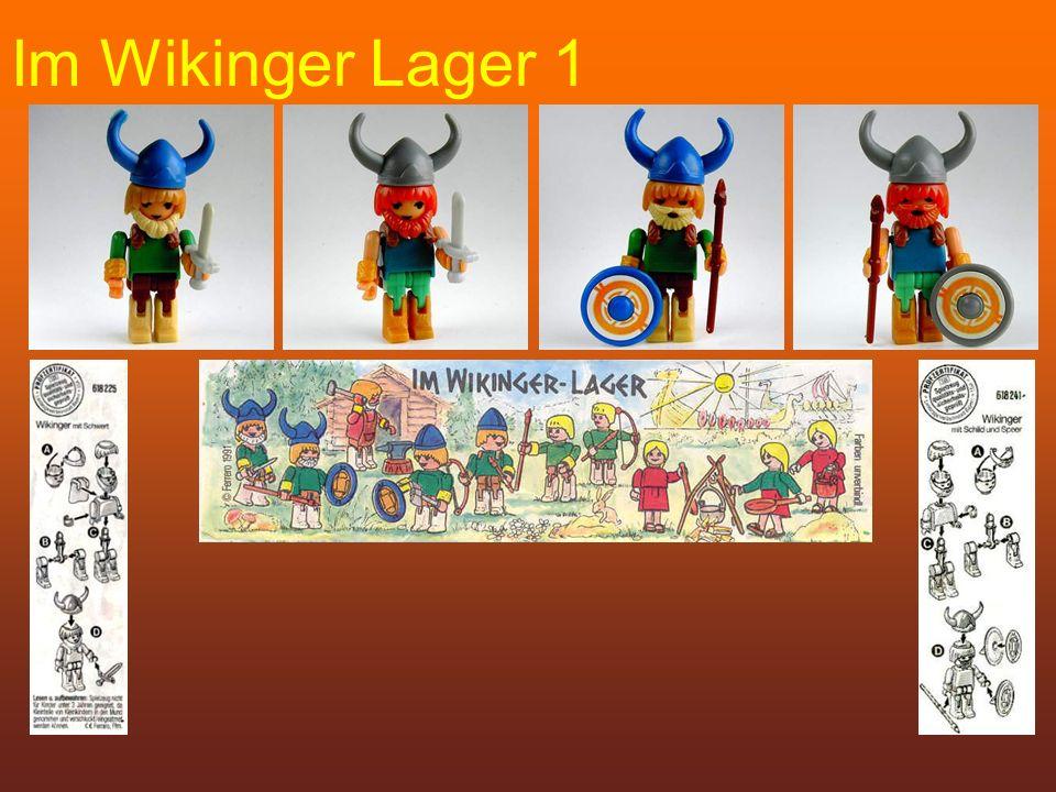 Im Wikinger Lager 1