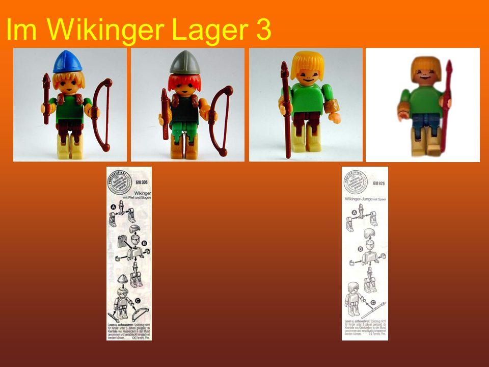 Im Wikinger Lager 3