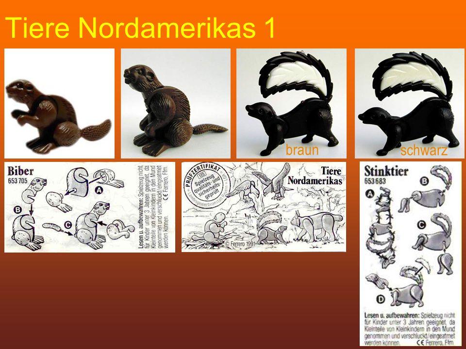 Tiere Nordamerikas 1 braun schwarz