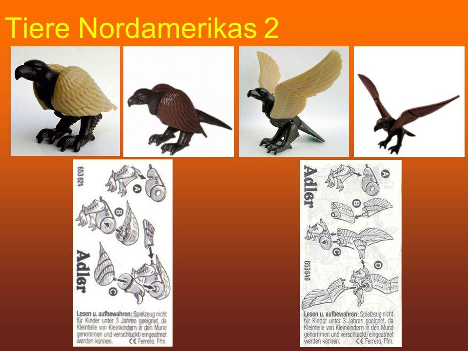 Tiere Nordamerikas 2