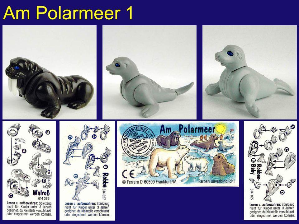 Am Polarmeer 2