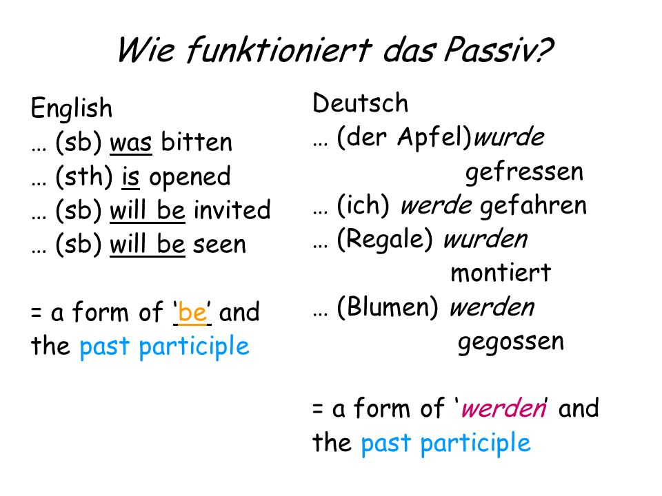 Wie funktioniert das Passiv? English … (sb) was bitten … (sth) is opened … (sb) will be invited … (sb) will be seen = a form of be and the past partic