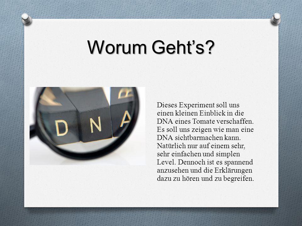 Worum Gehts? Dieses Experiment soll uns einen kleinen Einblick in die DNA eines Tomate verschaffen. Es soll uns zeigen wie man eine DNA sichtbarmachen