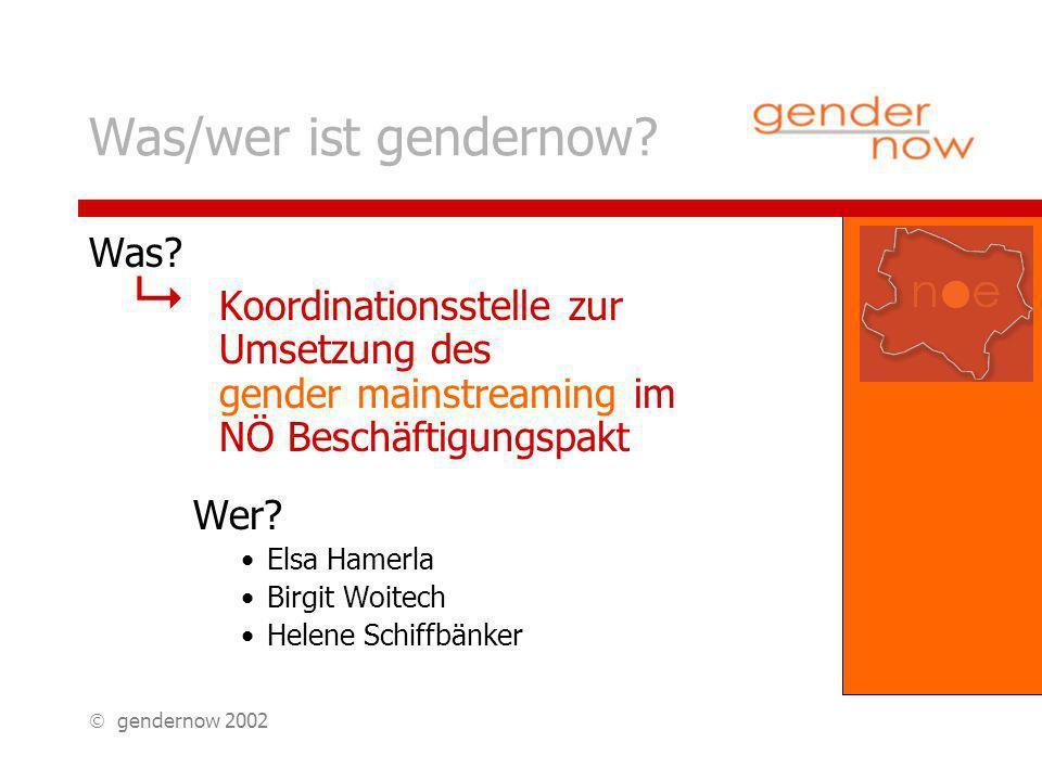 gendernow 2002 Was/wer ist gendernow. Was.