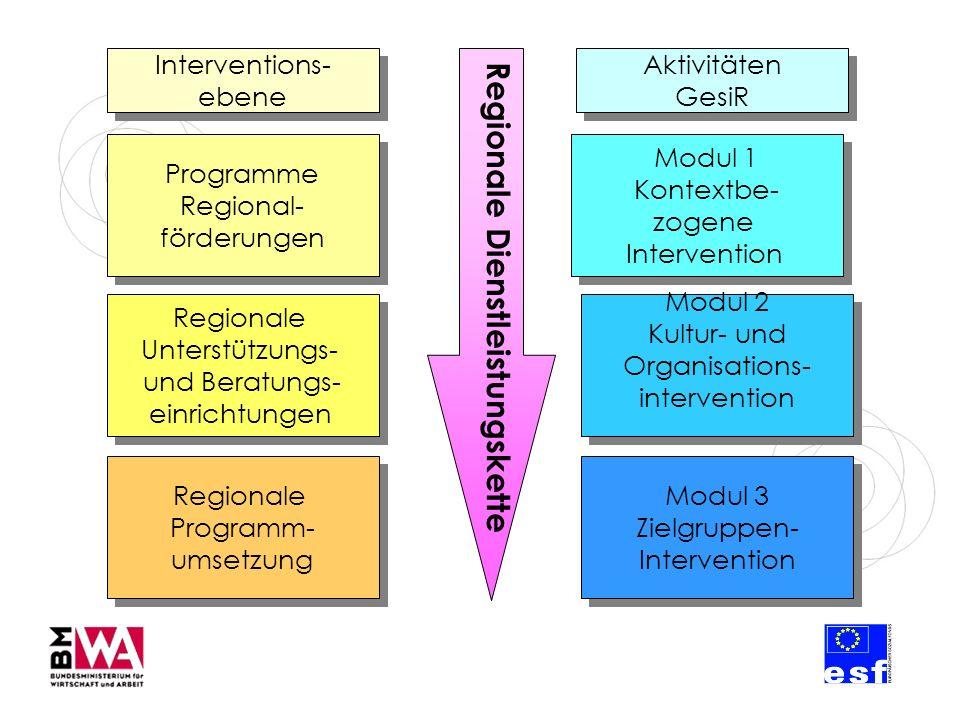 Programme Regional- förderungen Programme Regional- förderungen Regionale Unterstützungs- und Beratungs- einrichtungen Regionale Unterstützungs- und Beratungs- einrichtungen Interventions- ebene Interventions- ebene Regionale Programm- umsetzung Regionale Programm- umsetzung Regionale Dienstleistungskette Modul 1 Kontextbe- zogene Intervention Modul 1 Kontextbe- zogene Intervention Aktivitäten GesiR Modul 2 Kultur- und Organisations- intervention Modul 3 Zielgruppen- Intervention