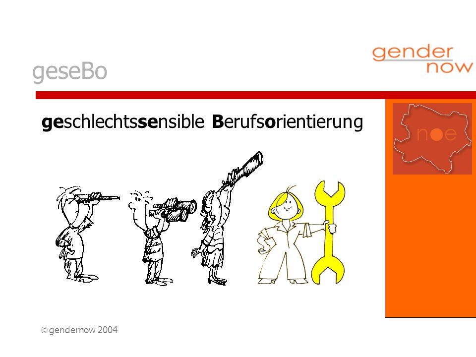 gendernow 2004 geseBo geschlechtssensible Berufsorientierung