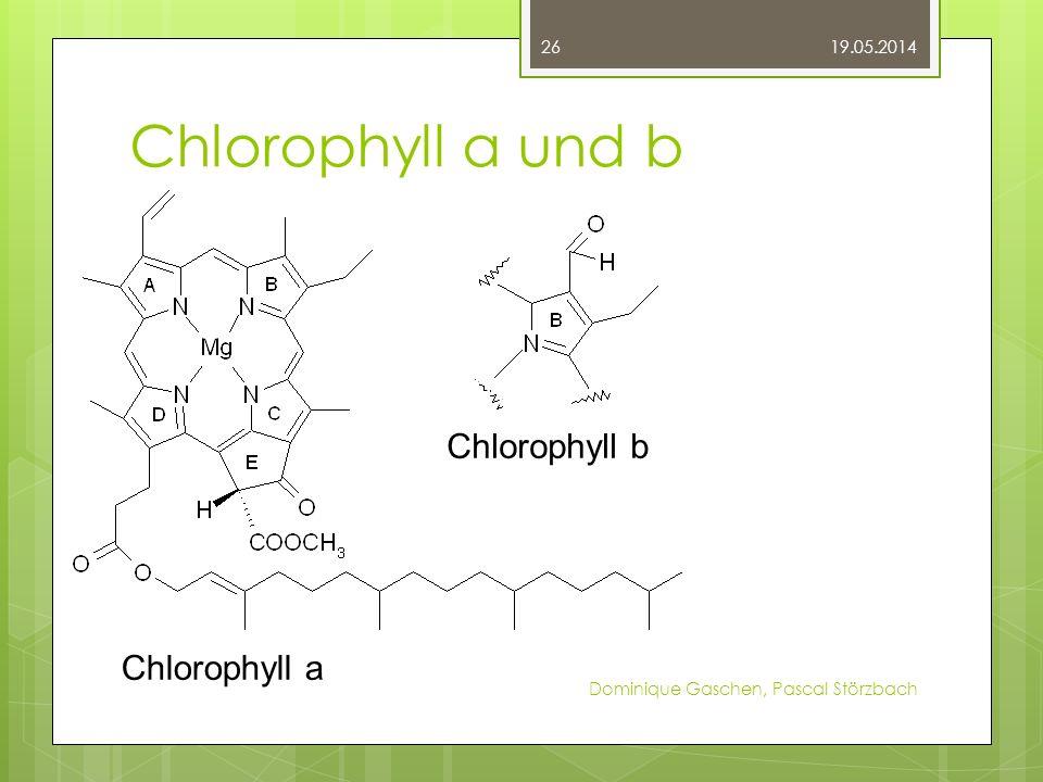 Chlorophyll a und b 19.05.2014 Dominique Gaschen, Pascal Störzbach 26 Chlorophyll a Chlorophyll b