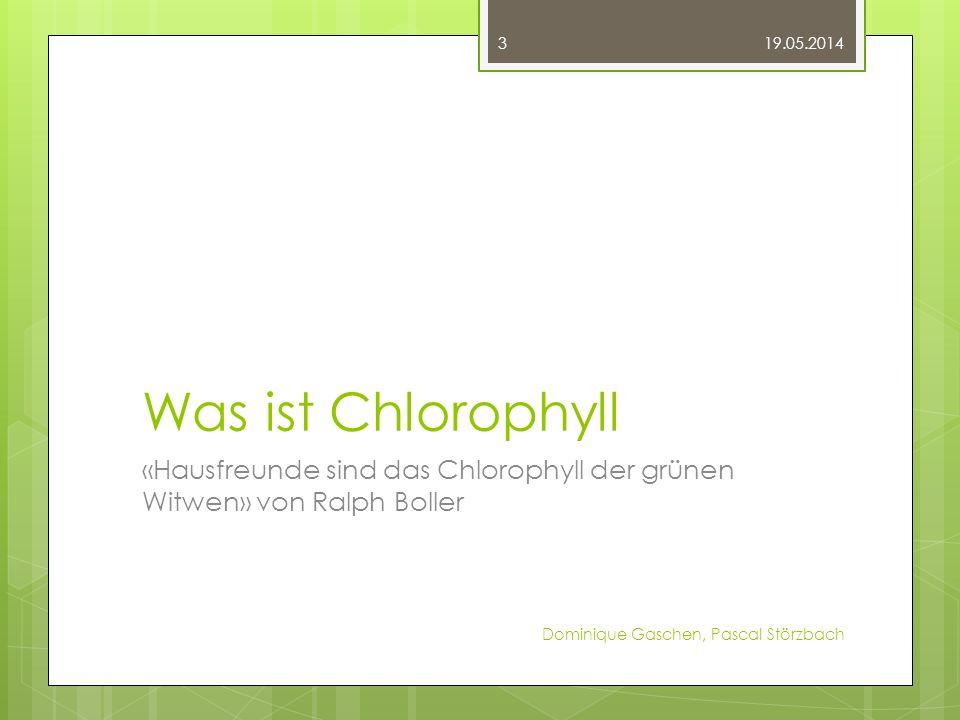 Was ist Chlorophyll «Hausfreunde sind das Chlorophyll der grünen Witwen» von Ralph Boller 19.05.2014 Dominique Gaschen, Pascal Störzbach 3