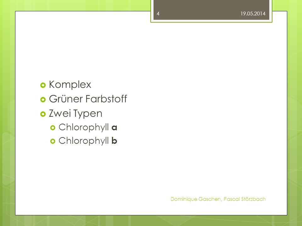 Komplex Grüner Farbstoff Zwei Typen Chlorophyll a Chlorophyll b 19.05.2014 Dominique Gaschen, Pascal Störzbach 4