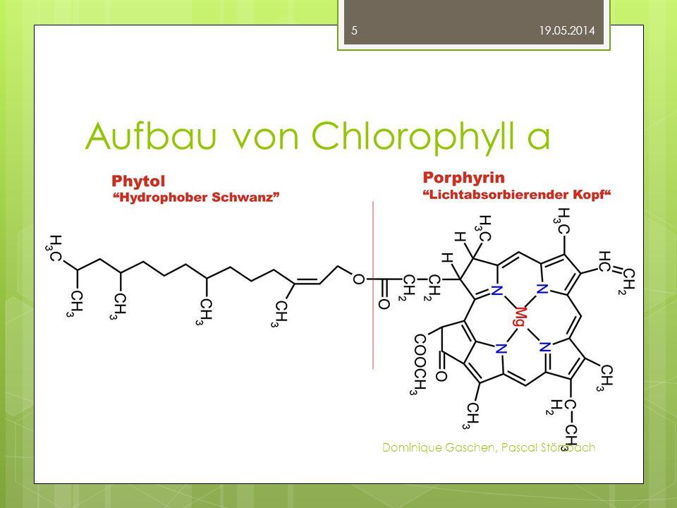 Aufbau von Chlorophyll a 19.05.2014 Dominique Gaschen, Pascal Störzbach 5