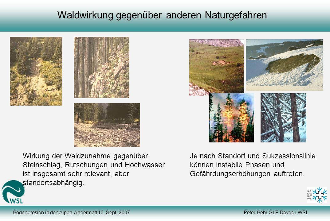 Waldwirkung gegenüber anderen Naturgefahren Wirkung der Waldzunahme gegenüber Steinschlag, Rutschungen und Hochwasser ist insgesamt sehr relevant, abe