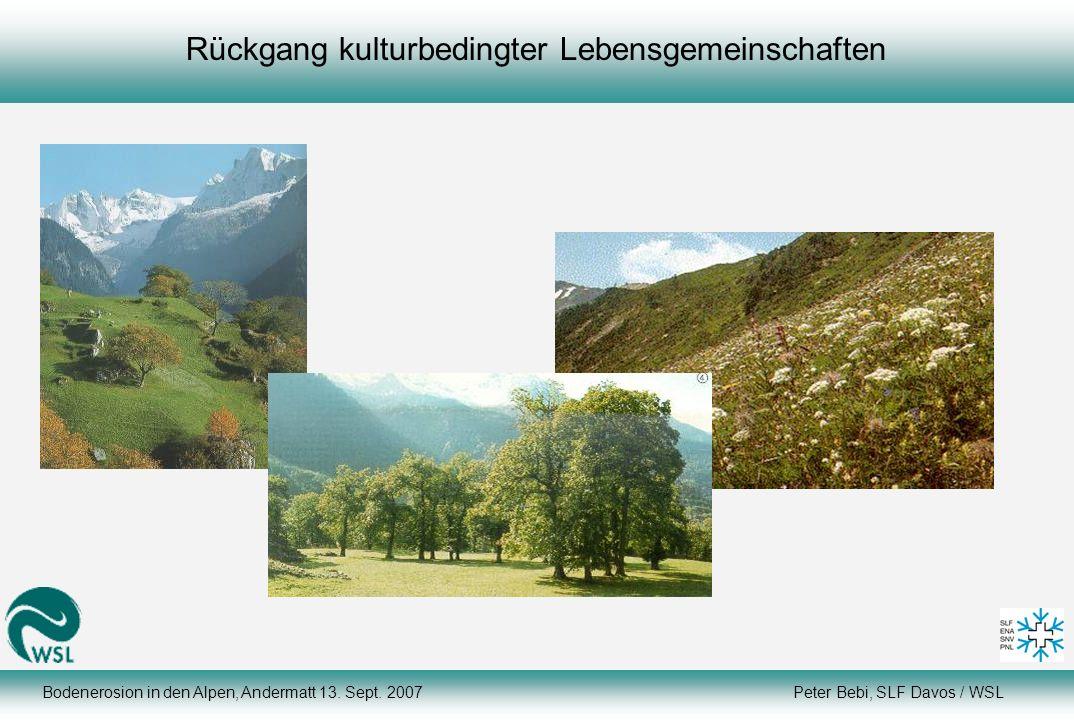 Rückgang kulturbedingter Lebensgemeinschaften Bodenerosion in den Alpen, Andermatt 13. Sept. 2007 Peter Bebi, SLF Davos / WSL
