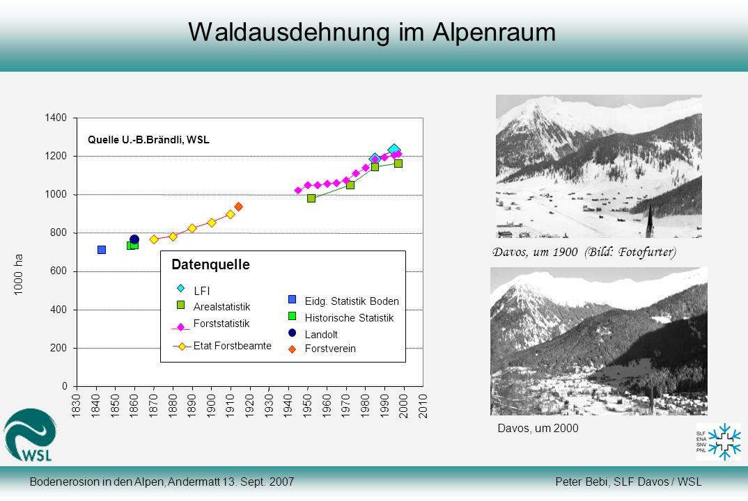 Bodenerosion in den Alpen, Andermatt 13. Sept. 2007 Peter Bebi, SLF Davos / WSL Waldausdehnung im Alpenraum 1000 ha Davos, um 1900 (Bild: Fotofurter)