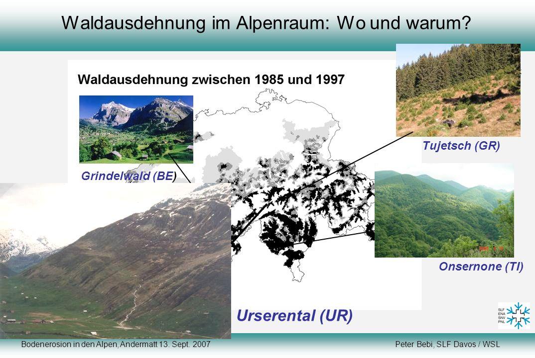 Datengrundlage: Arealstatistik Bodenerosion in den Alpen, Andermatt 13. Sept. 2007 Peter Bebi, SLF Davos / WSL Waldausdehnung im Alpenraum: Wo und war