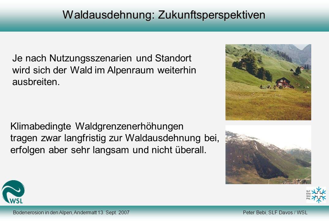 Bodenerosion in den Alpen, Andermatt 13. Sept. 2007 Peter Bebi, SLF Davos / WSL Waldausdehnung: Zukunftsperspektiven Klimabedingte Waldgrenzenerhöhung