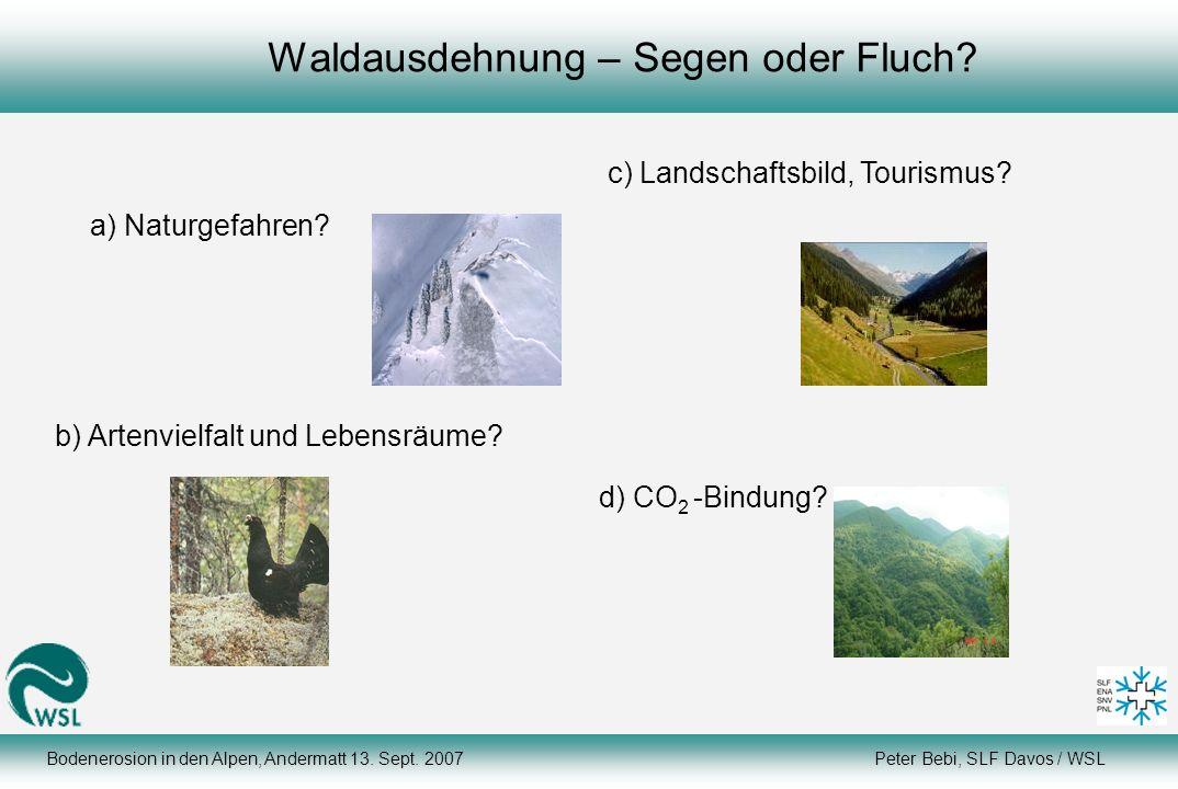 Bodenerosion in den Alpen, Andermatt 13. Sept. 2007 Peter Bebi, SLF Davos / WSL Waldausdehnung – Segen oder Fluch? d) CO 2 -Bindung? b) Artenvielfalt