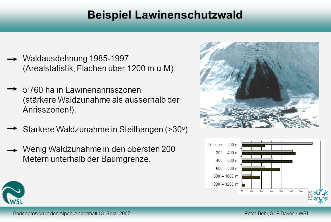 Beispiel Lawinenschutzwald Waldausdehnung 1985-1997: (Arealstatistik, Flächen über 1200 m ü.M). 5760 ha in Lawinenanrisszonen (stärkere Waldzunahme al