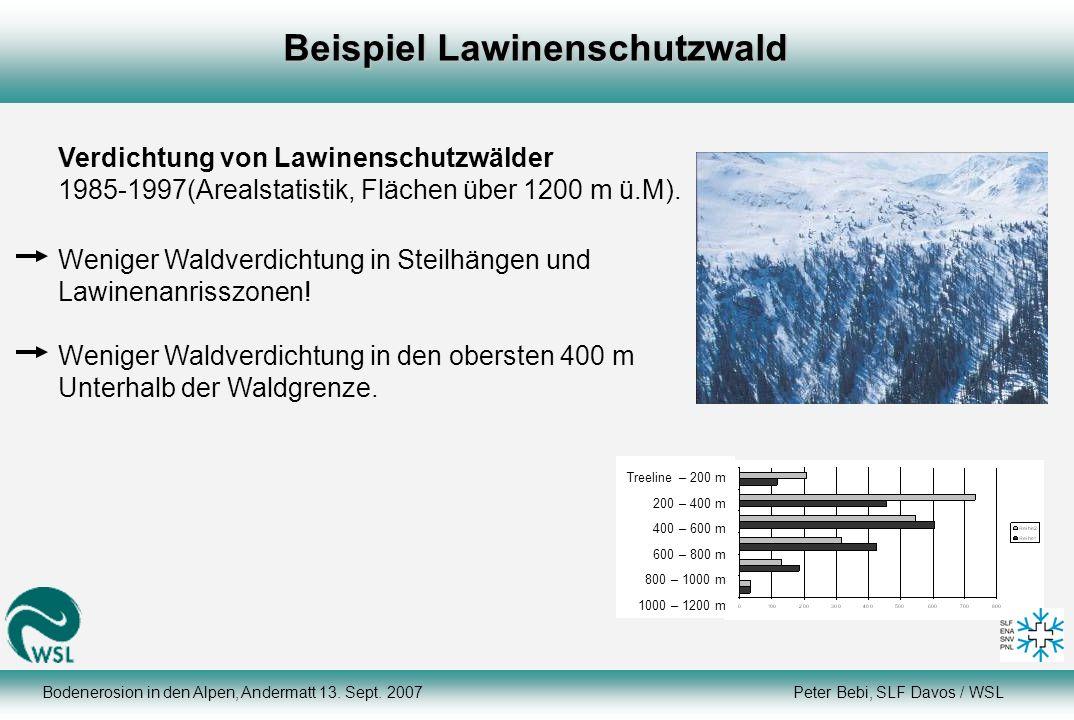 Verdichtung von Lawinenschutzwälder 1985-1997(Arealstatistik, Flächen über 1200 m ü.M). Weniger Waldverdichtung in Steilhängen und Lawinenanrisszonen!