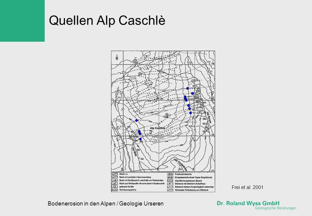 Bodenerosion in den Alpen / Geologie Urseren Quellen Alp Caschlè Frei et al. 2001