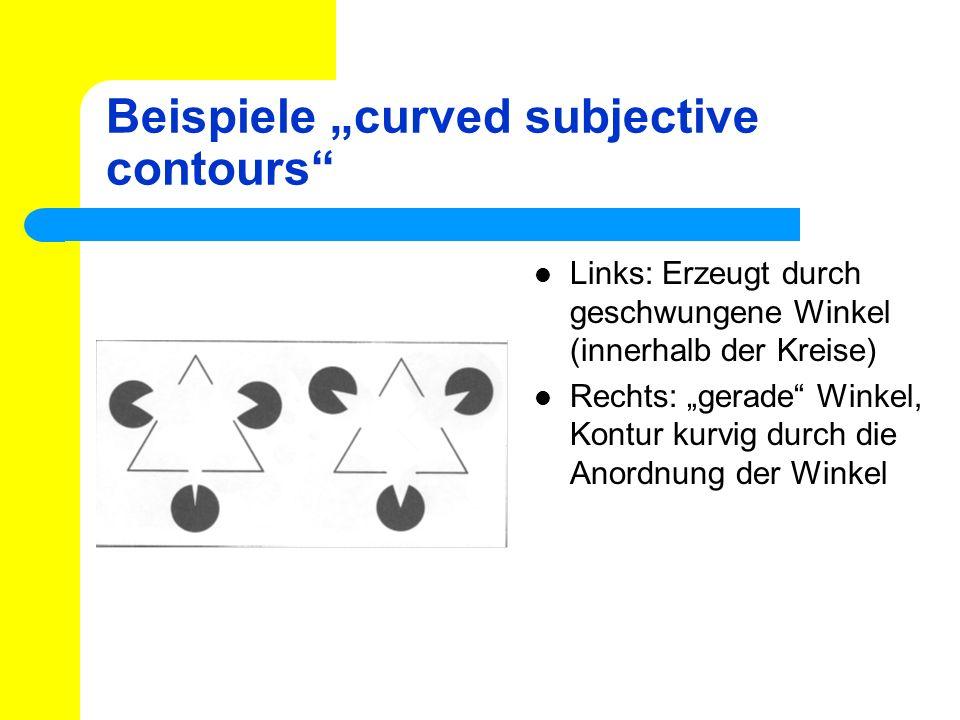 Beispiele curved subjective contours Links: Erzeugt durch geschwungene Winkel (innerhalb der Kreise) Rechts: gerade Winkel, Kontur kurvig durch die An
