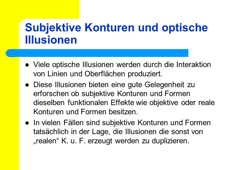 Subjektive Konturen und optische Illusionen Viele optische Illusionen werden durch die Interaktion von Linien und Oberflächen produziert. Diese Illusi