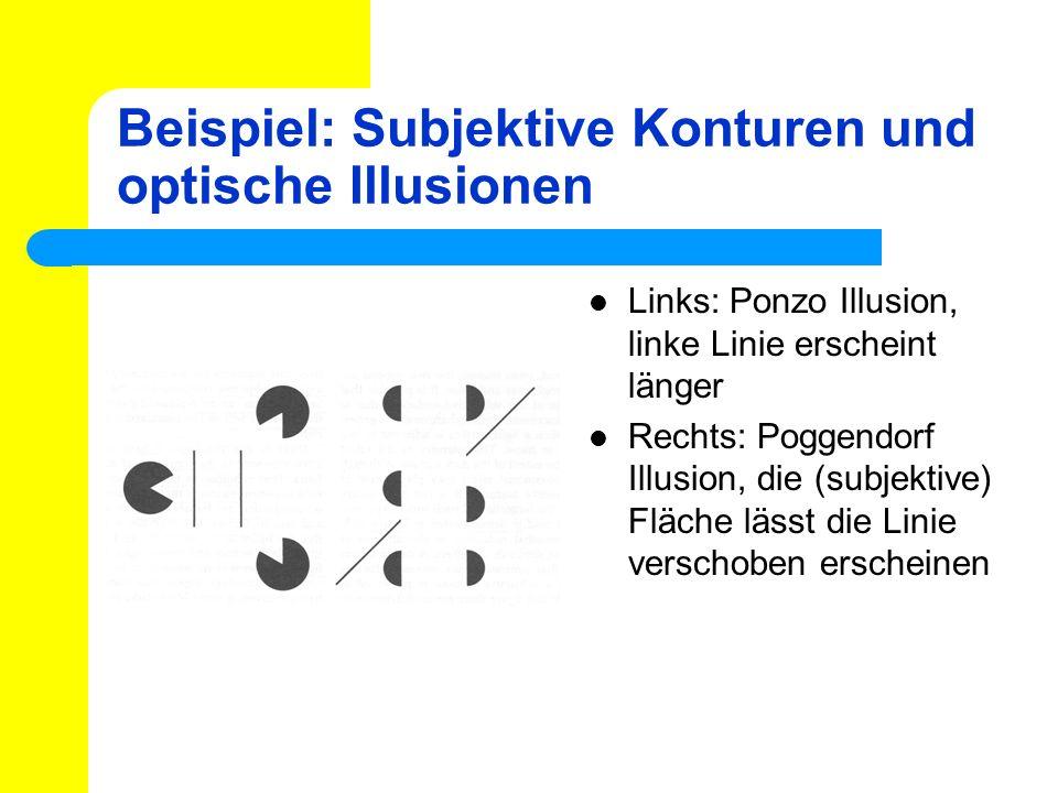 Beispiel: Subjektive Konturen und optische Illusionen Links: Ponzo Illusion, linke Linie erscheint länger Rechts: Poggendorf Illusion, die (subjektive