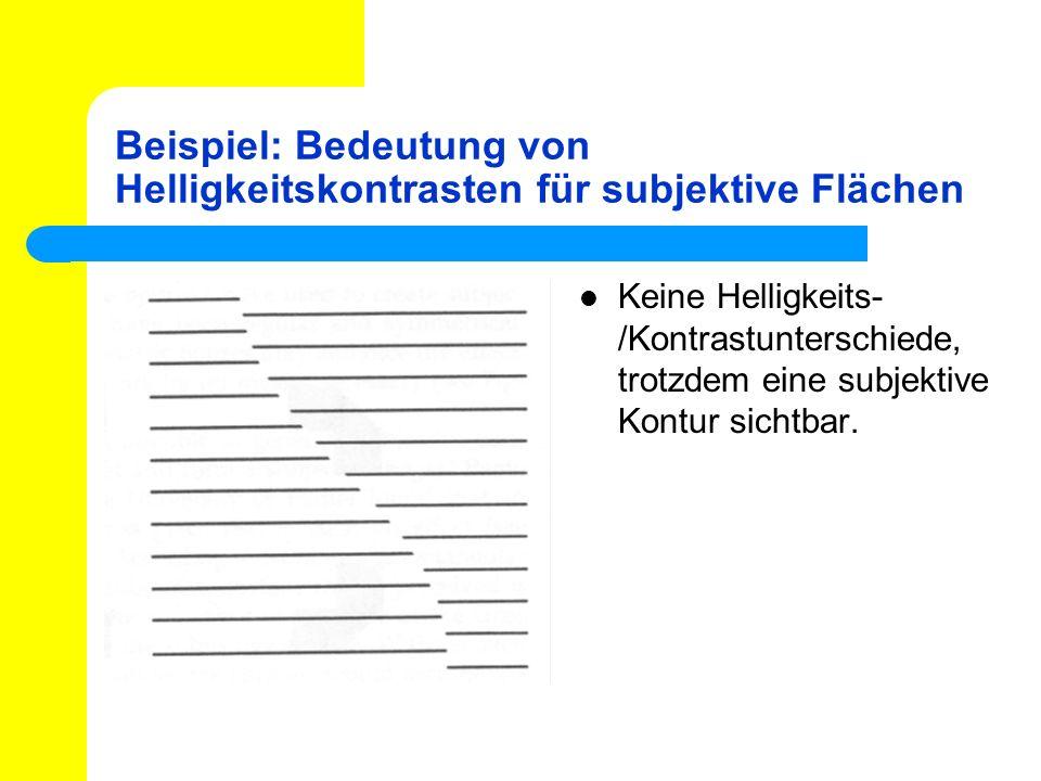 Beispiel: Bedeutung von Helligkeitskontrasten für subjektive Flächen Keine Helligkeits- /Kontrastunterschiede, trotzdem eine subjektive Kontur sichtba
