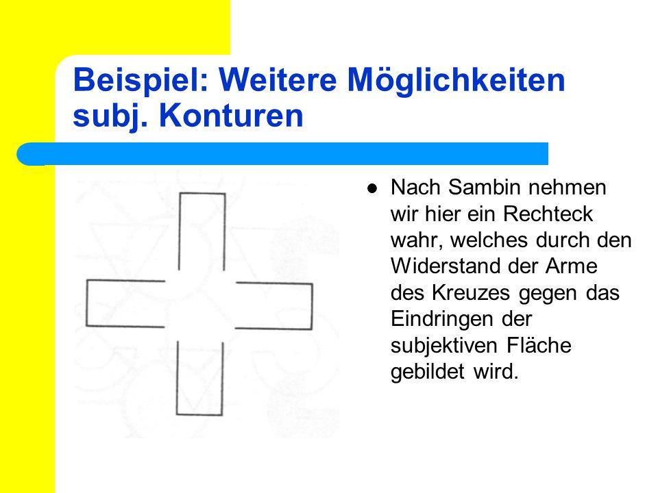 Beispiel: Weitere Möglichkeiten subj. Konturen Nach Sambin nehmen wir hier ein Rechteck wahr, welches durch den Widerstand der Arme des Kreuzes gegen