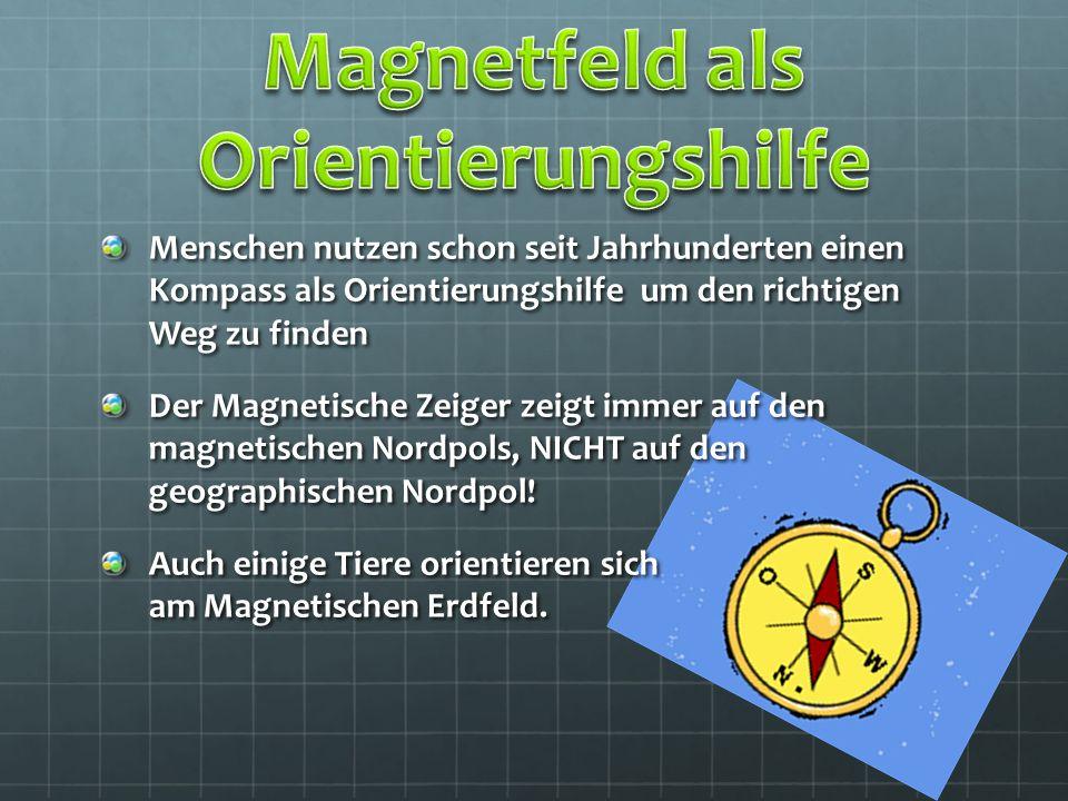 Menschen nutzen schon seit Jahrhunderten einen Kompass als Orientierungshilfe um den richtigen Weg zu finden Der Magnetische Zeiger zeigt immer auf de