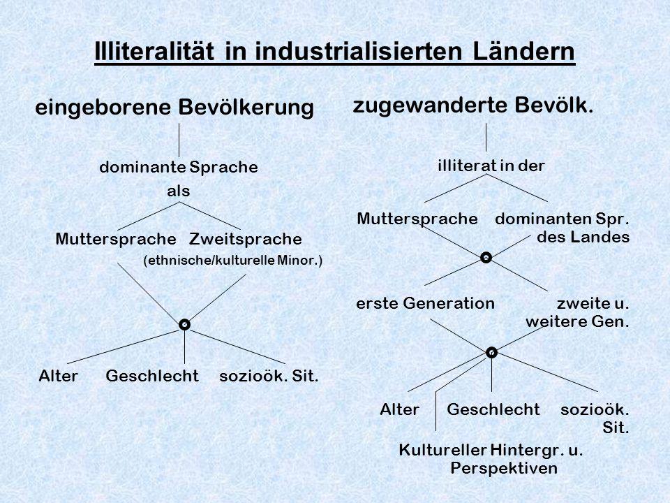 Illiteralität in industrialisierten Ländern eingeborene Bevölkerung dominante Sprache als MutterspracheZweitsprache (ethnische/kulturelle Minor.) Alte