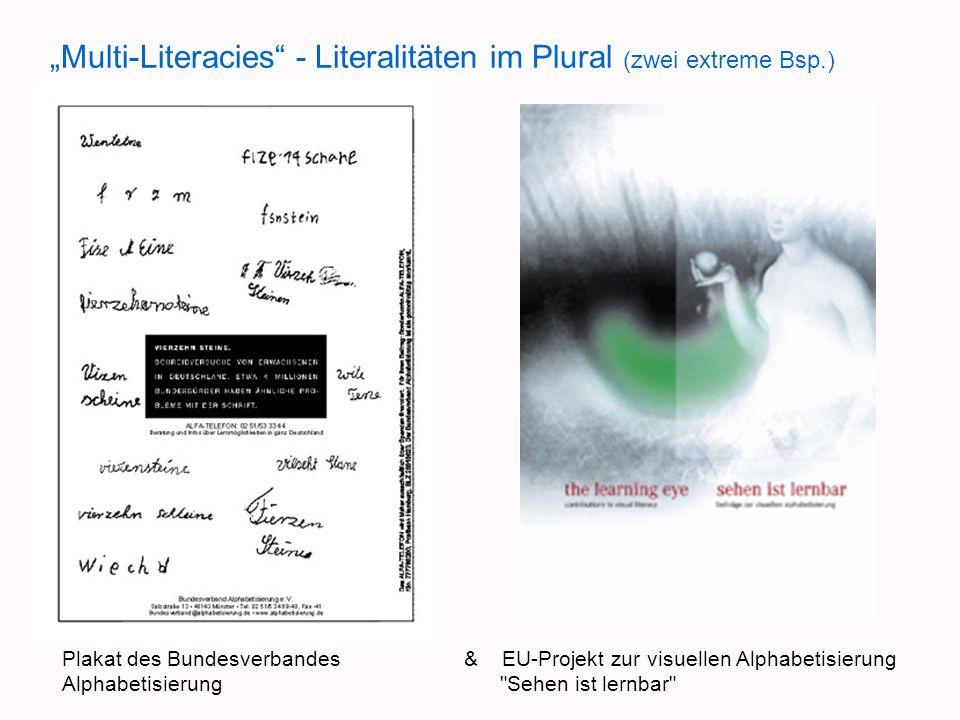 Multi-Literacies - Literalitäten im Plural (zwei extreme Bsp.) Plakat des Bundesverbandes & EU-Projekt zur visuellen Alphabetisierung Alphabetisierung