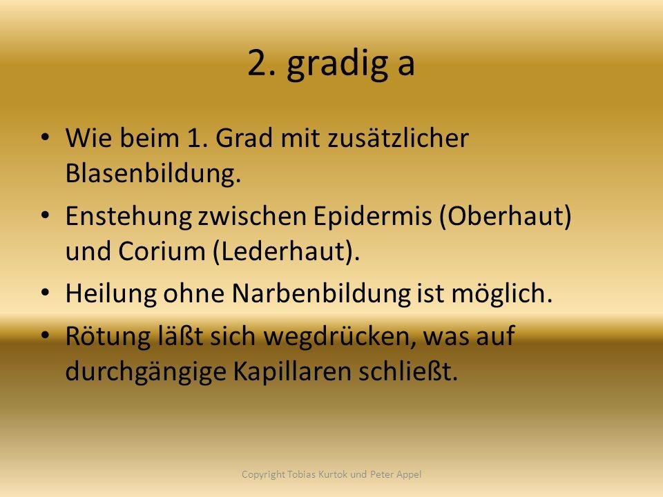2. gradig a Wie beim 1. Grad mit zusätzlicher Blasenbildung. Enstehung zwischen Epidermis (Oberhaut) und Corium (Lederhaut). Heilung ohne Narbenbildun