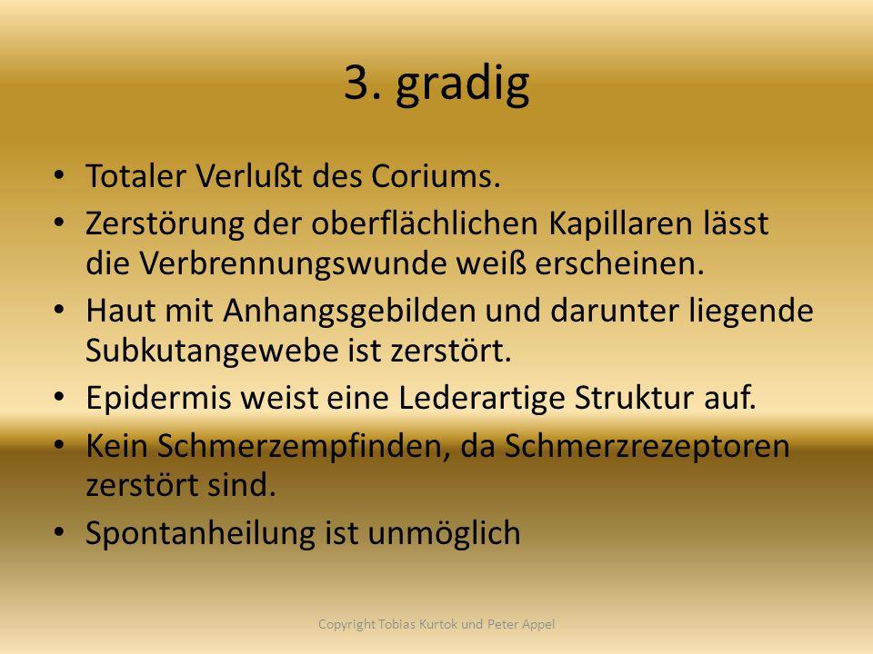 3. gradig Totaler Verlußt des Coriums. Zerstörung der oberflächlichen Kapillaren lässt die Verbrennungswunde weiß erscheinen. Haut mit Anhangsgebilden