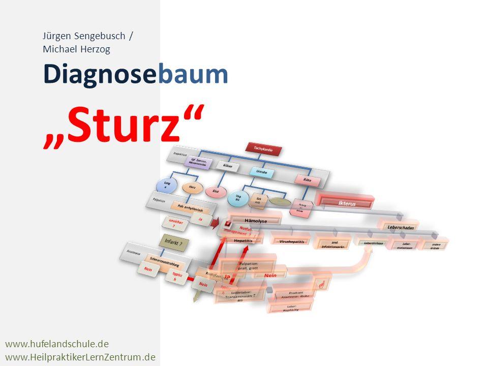 www.hufelandschule.de www.HeilpraktikerLernZentrum.de Jürgen Sengebusch / Michael Herzog Diagnosebaum Sturz