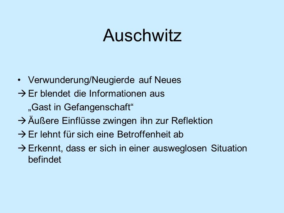 Auschwitz Verwunderung/Neugierde auf Neues Er blendet die Informationen aus Gast in Gefangenschaft Äußere Einflüsse zwingen ihn zur Reflektion Er lehn