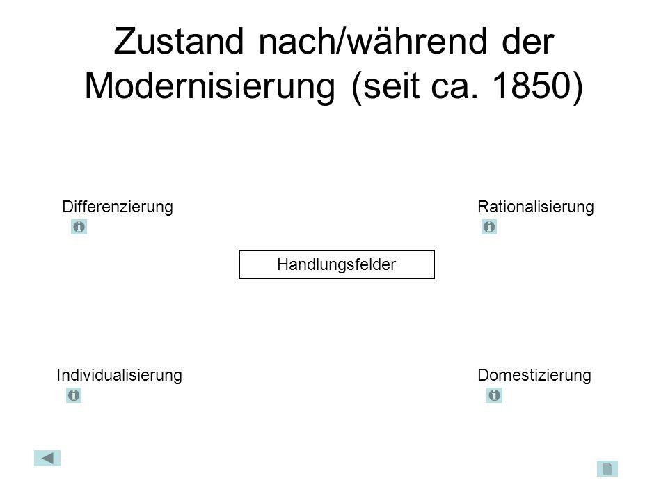 Zustand nach/während der Modernisierung (seit ca. 1850) Handlungsfelder DifferenzierungRationalisierung IndividualisierungDomestizierung