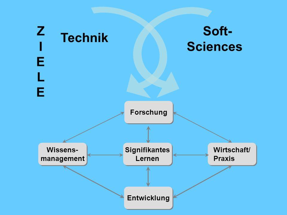 Forschung Wirtschaft/ Praxis Wirtschaft/ Praxis Wissens- management Wissens- management Entwicklung Signifikantes Lernen Signifikantes Lernen Technik