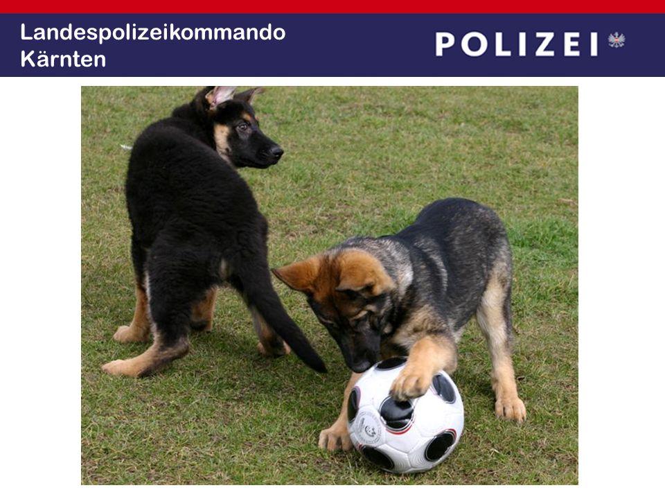 Landespolizeikommando Kärnten
