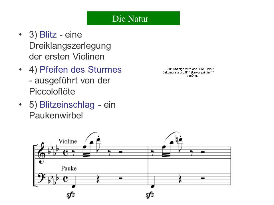 2) Donner - die Violincelli spielen eine aufsteigende Tonfolge in Quintolen, die Kontrabässe spielen um einen Ton weniger, daher die Sechzehntelbewegung Die Natur
