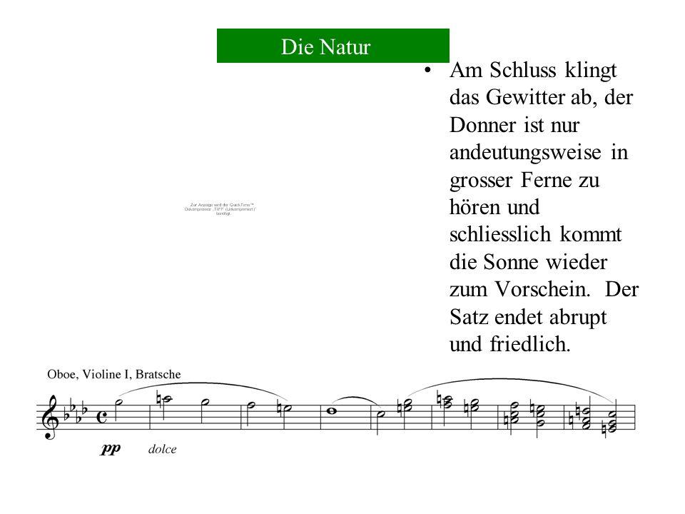 3) Blitz - eine Dreiklangszerlegung der ersten Violinen 4) Pfeifen des Sturmes - ausgeführt von der Piccoloflöte 5) Blitzeinschlag - ein Paukenwirbel Die Natur